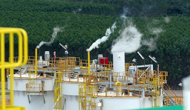 Concentração de CO2 e outros elementos bateu novo recorde em 2014 - Foto: Renata Carvalho | Ag. A TARDE | 17.10.2005