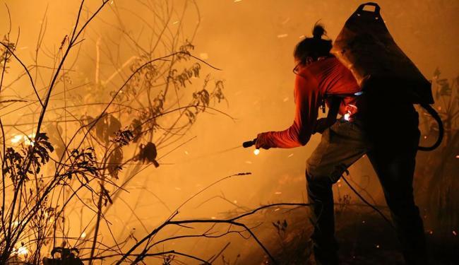 Brigadistas e voluntários tentam controlar as chamas, que estão descontroladas - Foto: Dimitri Argolo Cerqueira | Divulgação