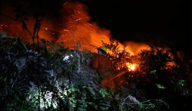 Brigadistas tentam controlar diversos focos de incêndio na Chapada - Foto: Tayne Luz | Reprodução | Jornal da Chapada