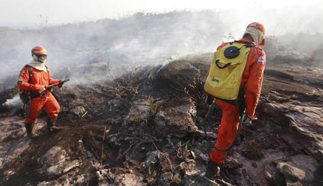 Incêndio na Chapada está sob controle, mas alguns focos ainda resistem - Foto: Mateus Pereira l GovBA