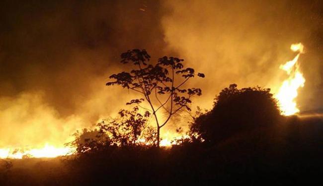 Desde setembro, as queimadas fugiram do controle - Foto: Edmar Carvalho l Divulgação