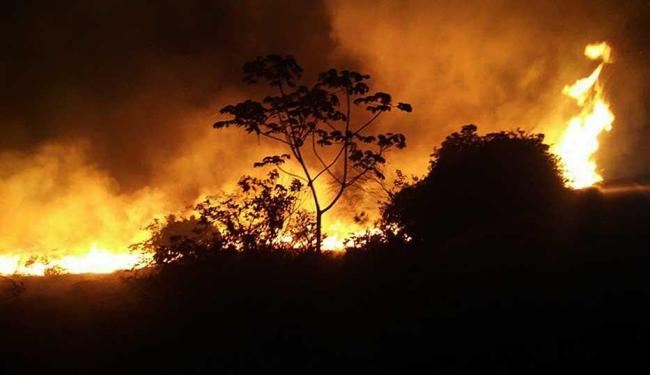 Nesse momento há 4 grandes incêndios na região da Chapada - Foto: Edmar Carvalho | Divulgação