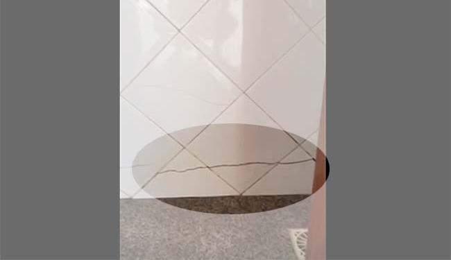 Rachadura no revestimento do banheiro - Foto: Felícia Limoeiro Lobo   Cidadão Repórter