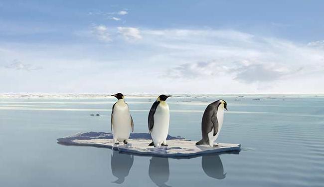 Aquecimento global é responsável, dentre outras coisas, ao derretimento das geleiras - Foto: Divulgação