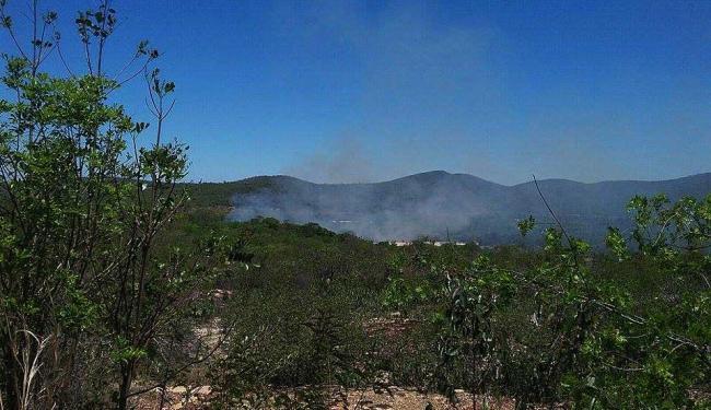 A Ilha do Paraguaçu, em Andaraí, é um dos locais afetados pelos focos de incêndio - Foto: Homero Vieira / Cifa