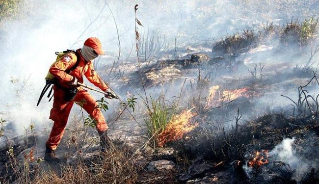 Brigadistas mantém combate ao fogo na Chapada - Foto: Mateus Pereira | GOVBA | Divulgação