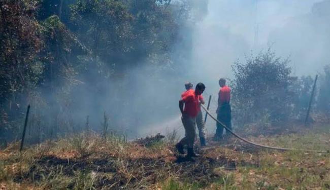 Trabalho dos bombeiros durou cerca de quatro horas - Foto: Luciano da Matta | Ag. A TARDE