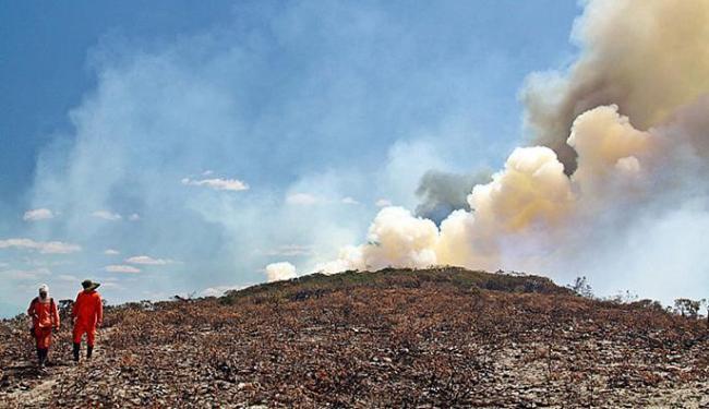Incêndios florestais no território Piemonte da Chapada avançam - Foto: Saulo Côrte l Divulgação