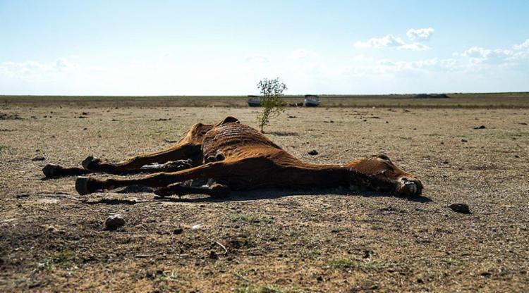 chuva, sobradinho, seca, bahia - Foto: Marcello Casal Jr. | Ag. Brasil