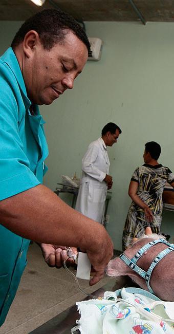 Em 2015, foram realizadas 6 mil cirurgias no Castramóvel - Foto: Mila Cordeiro | Ag. A TARDE