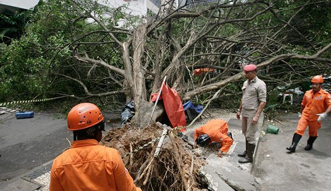 Ambulante morreu atingida por uma árvore caída na Tancredo Neves na manhã desta sexta, 22 - Foto: Raul Spinassé | Ag. A TARDE