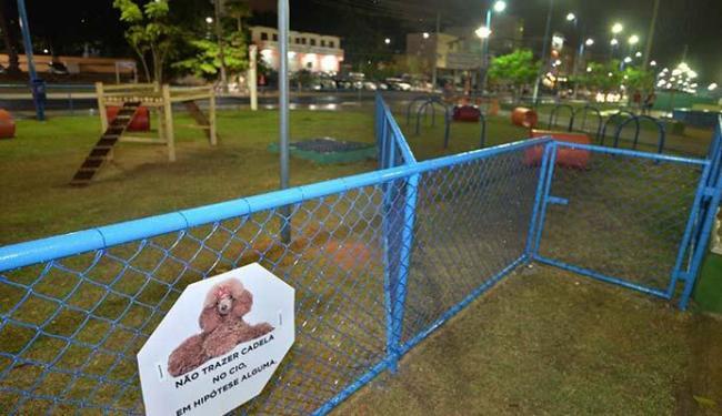 Cachorros vão poder brincar em um local seguro e cercado - Foto: Reprodução   Facebook
