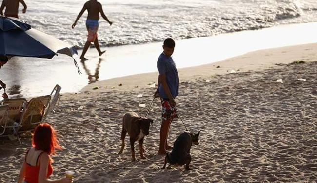 Em Itapuã, jovem é flagrado com dois cachorros, enquanto um dos animais urinava na areia da praia - Foto: Joá Souza | Ag. A TARDE