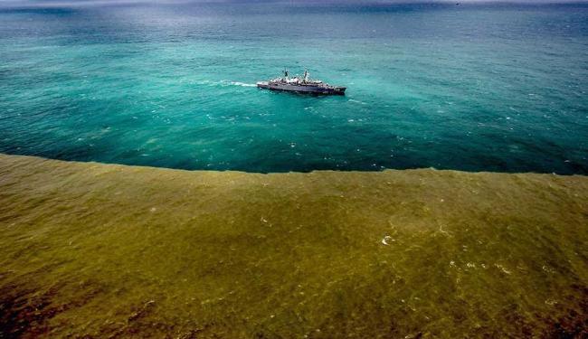 Lama chegou em novembro no mar - Foto: Gabriela Biló | Estadão Conteúdo, Data: 22/11/2015
