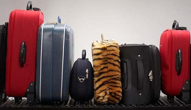 Agências de turismo são impactadas por mudança e devem repassar custo para clientes - Foto: Divulgação