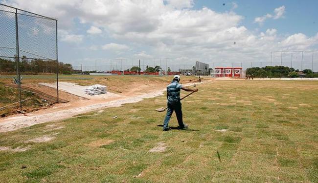 Trabalhos nos gramados estão em processo de finalização - Foto: Luciano da Matta   Ag. A TARDE
