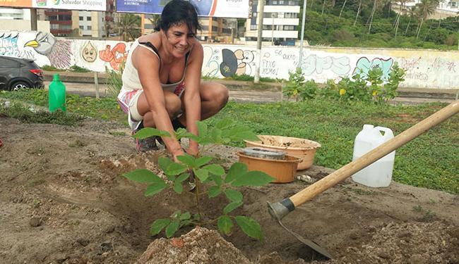 Ipê sendo plantado no local da morte da estudante Maria Emília Campos, 34 anos - Foto: Divulgação