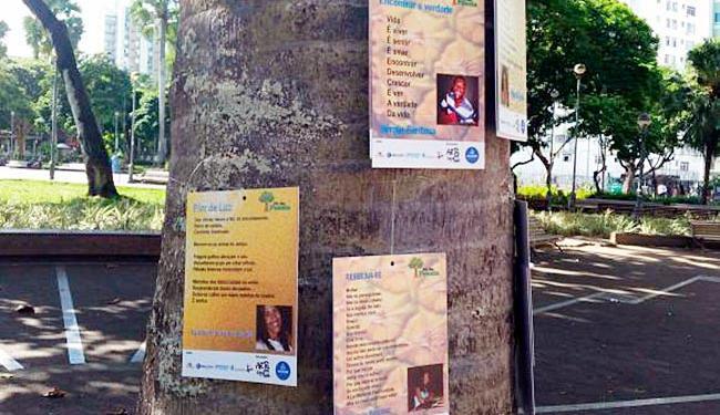 As poesias foram penduradas em árvores nas praças Dois de Julho, da Sé e da Piedade - Foto: Sayonara Moreno   Ag. Brasil