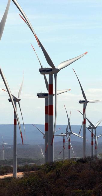 Investimentos em eólica na Bahia somam R$ 18,5 bi - Foto: Manu Dias l Gov-BA l 11.4.2013