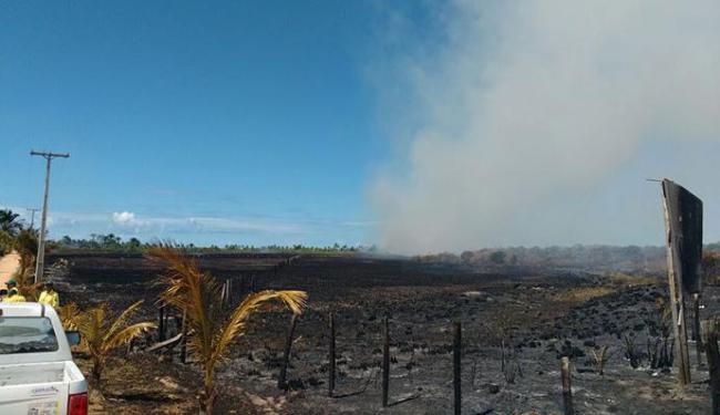A região atingida pelas chamas enfrenta uma crise hídrica e está no oitavo mês de seca - Foto: Divulgação| Bombeiros