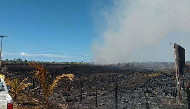 O período de seca facilita a expansão do fogo na região - Foto: Bombeiros l Divulgação