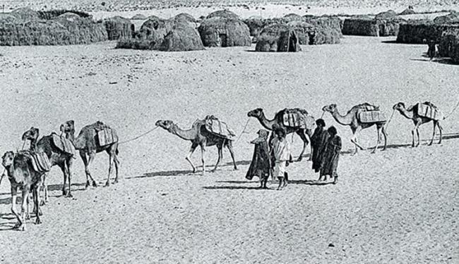 Chegada de uma caravana de sal em barras em Timbuktu - Foto: Edmond Fortier l Divulgação