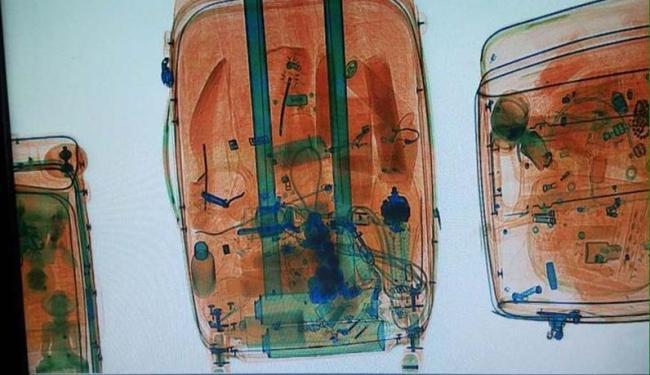 Droga foi localizada pela Polícia Federal quando as malas passavam pelo raio-x do aeroporto - Foto: Divulgação | Polícia Federal