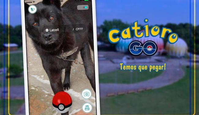 Uma das oito peças publicitárias da campanha Catioro Go - Foto: Reprodução   Facebook