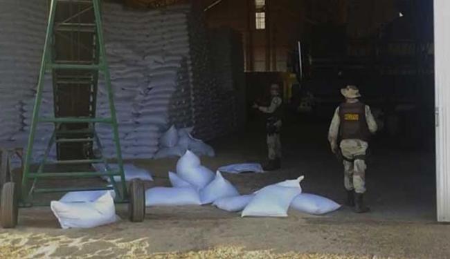 Ao todo foram 1.000 sacas roubadas - Foto: Cipe | Cerrado