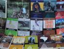 Livros sobre Cultura Afro-brasileira e Indígena são lançados - Foto: Amanda Moreno | Divulgação
