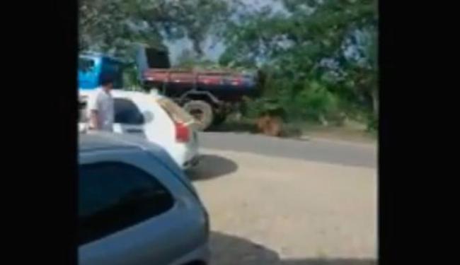 Cavalo foi amarrado em caminhão e arrastado por cerca de 500 metros - Foto: Reprodução