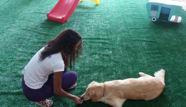 Os donos de animais contam com o serviço - Foto: Daniela Castro | Divulgação