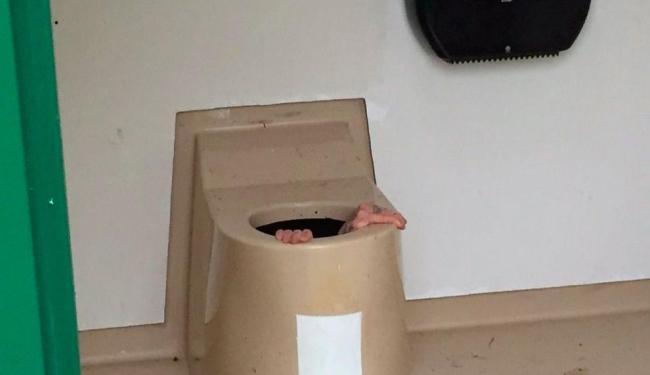 Jovem não conseguiu sair de dentro do vaso e bombeiros foram acionados - Foto: Reprodução   NRK