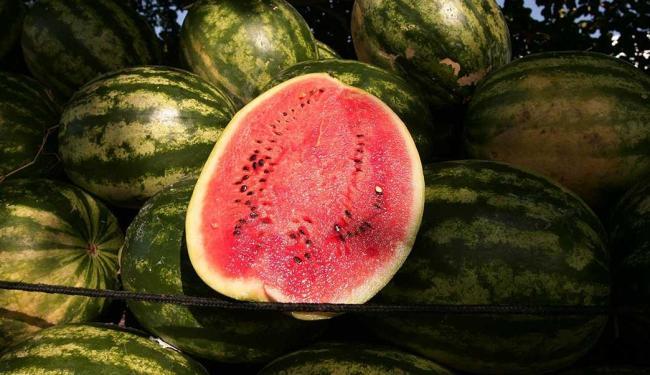 A ingestão de frutas esteve presente em 98,8% das composições de lanches estudadas - Foto: Joá Souza | Ag. A TARDE
