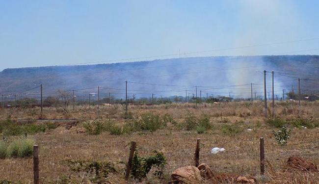 Mata de reserva nativa no vale do rio Grande, arredores de Barreiras, foi atingida por fogo no últim - Foto: Miriam Hermes l Ag. A TARDE
