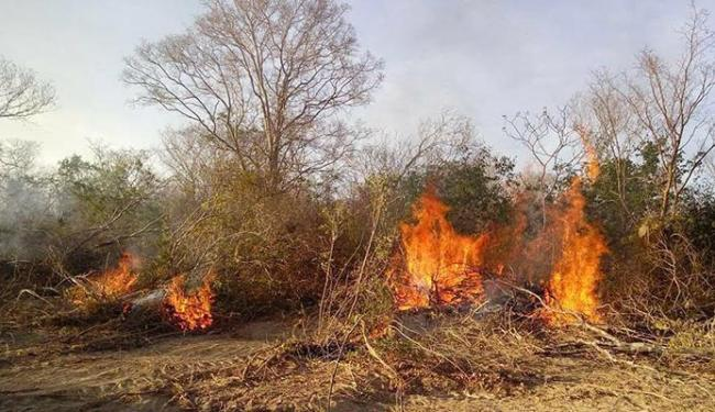 Incêndios também causa problemas respiratórios na região - Foto: Joaquim Dantas | Divulgação