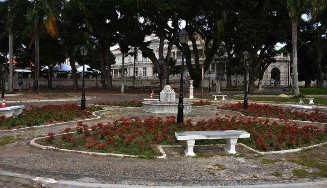 Passeio Publico ganhará 20 palmeiras imperiais - Foto: Jefferson Vieira   Divulgação