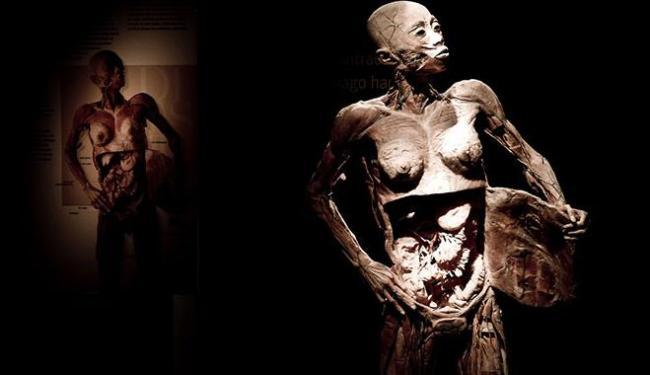 A exposição é constituída por corpos reais e será hospedada no Salvador Shopping - Foto: Foto | Divulgação