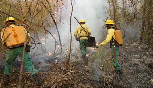 Serra do Mimo foi uma das áreas afetadas por fogo na temporada de seca passada - Foto: Miriam Hermes | A TARDE | 31.8.2012