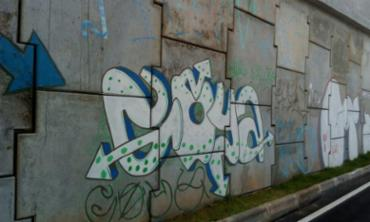 Pichações e grafites presentes no viaduto - Foto: Guarda Municipal | Divulgação