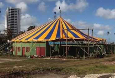 Picolino inaugura lona nova com música, dança, poesia, capoeira e circo