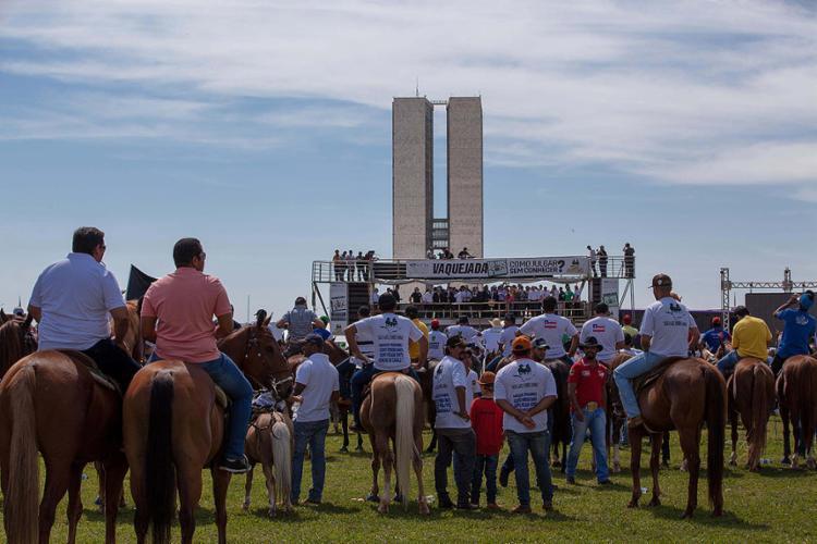 Vaqueiros protestaram nesta terça-feira, 25, em Brasília contra proibição da atividade pelo STF - Foto: Ronaldo Nascimento l Futura Press l Estadão Conteúdo