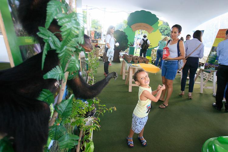 Público infantil tem diversão garantida no Parque da Cidade - Foto: Joá Souza l Ag. A TARDE