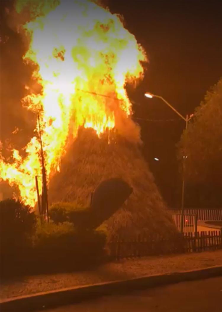 O fogo destruiu totalmente a árvore - Foto: Reprodução | Facebook
