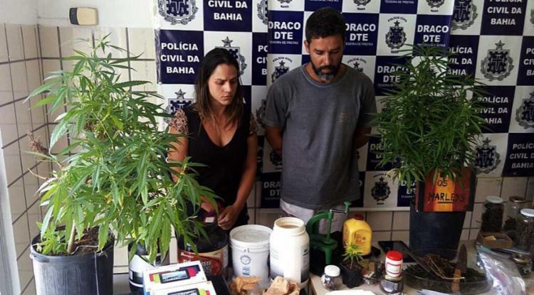 Casal cultivava a maconha, secava, prensava e vendia no restaurante - Foto: Ascom | Polícia Civil