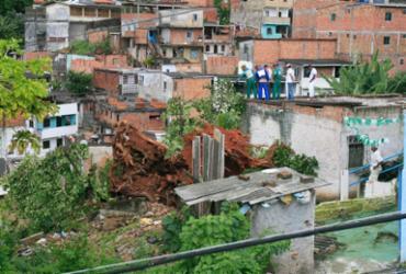 Onze famílias receberão auxílio da prefeitura após queda de árvore