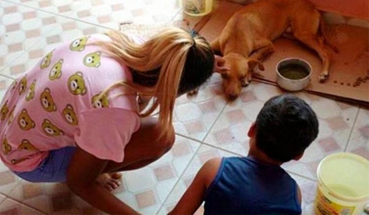 Cachorro ficou cego com a agressão sofrida - Foto: Reprodução | Blog do Anderson