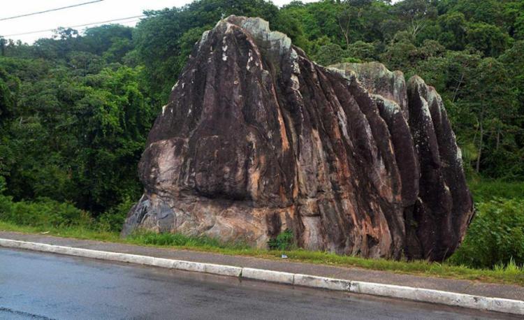 Parque terá pouco mais de 17 hectares - Foto: Jefferson Peixoto   Agecom