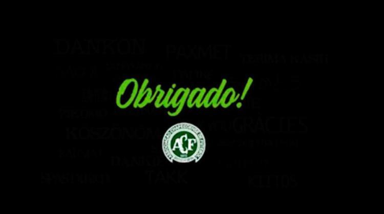 Chapecoense agradeceu apoio e carinho que recebeu - Foto: Reprodução | Twitter
