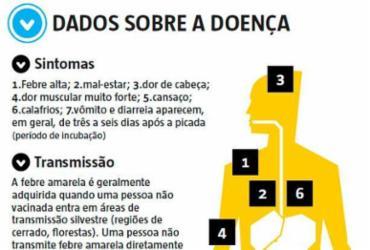 Estado da Bahia está em alerta contra febre amarela